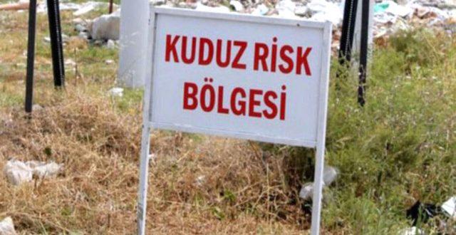 Urfa kuduz paniği…Köy karantinaya alındı