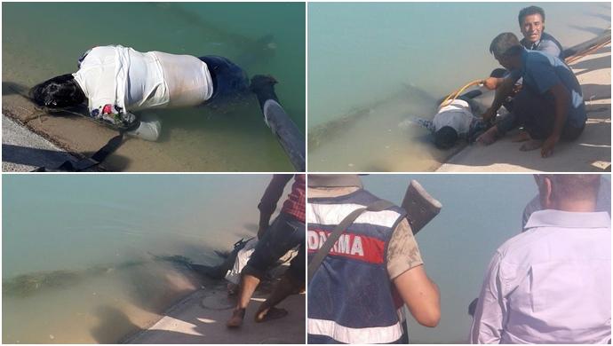 Urfa'da DSİ kanalında kadın cenazesi bulundu