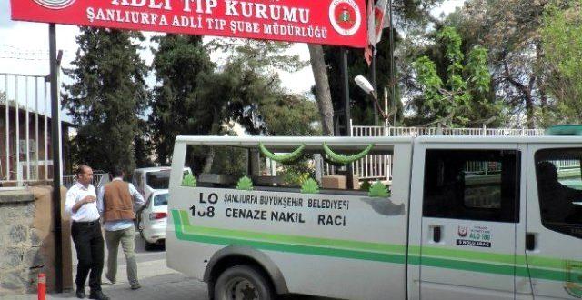 Urfa'da elektrik akımına kapılan çocuk hayatını kaybetti