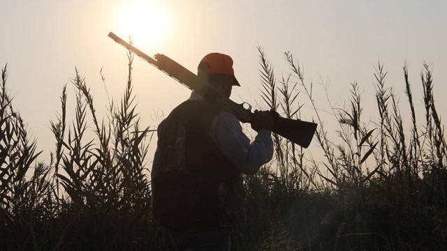 Urfa'da kaçak avcılara geçit yok! Kaçak avlanan kişi hakkında işlem yapıldı