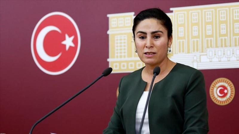 Vekil Sürücü Siverek'teki olayı Cumhurbaşkanı Yardımcısı Oktay'a sordu