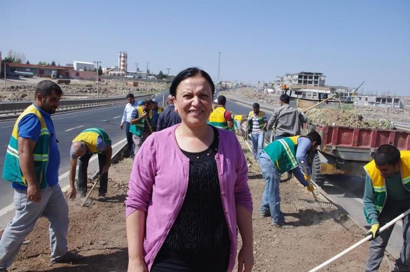 Viranşehir Belediyesinden Orta Refüj Düzenleme Çalışmaları