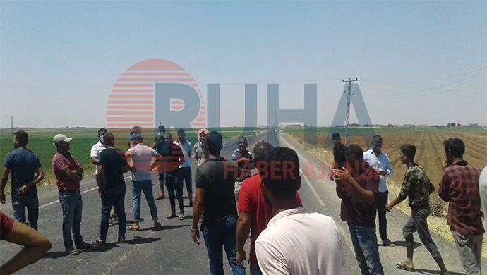 Viranşehirli Çiftçi DEDAŞ'a İsyan Etti: Yolu Trafiğe Kapattı