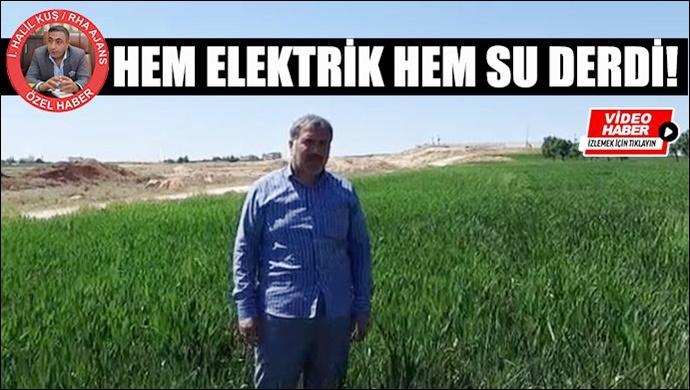 Viranşehirli çiftçinin isyanı: Ne elektrik var ne su veriliyor!
