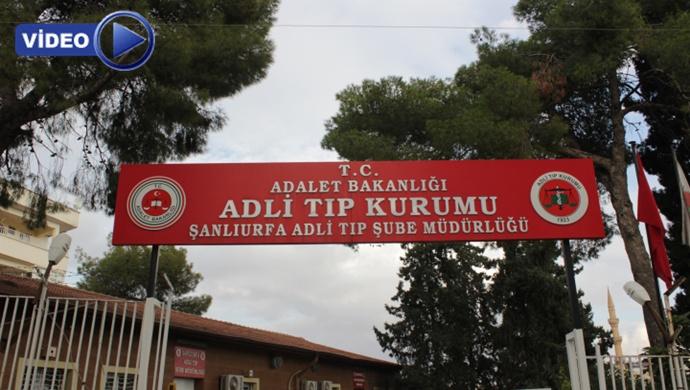 4 PKK'lının cenazesi Urfa'ya getirildi